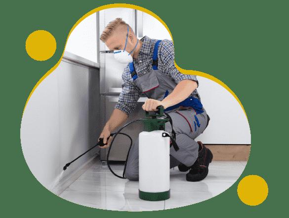 Professional Pest Control Alkimos